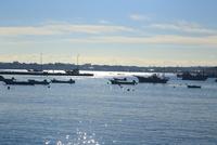 佐島漁港 10669002055| 写真素材・ストックフォト・画像・イラスト素材|アマナイメージズ