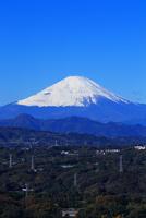 湘南平からの富士山 10669002142  写真素材・ストックフォト・画像・イラスト素材 アマナイメージズ