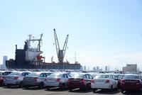 船積み待ちの自動車