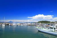 葉山港から望む夏富士
