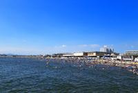 夏の片瀬海岸西浜海水浴場