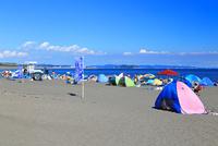 夏のサザンビーチちがさき
