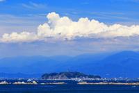 葉山から望む夏の江の島