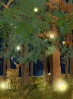森の中 10672000002| 写真素材・ストックフォト・画像・イラスト素材|アマナイメージズ