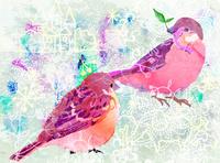 小鳥 10672000032| 写真素材・ストックフォト・画像・イラスト素材|アマナイメージズ