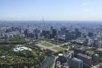 スカイツリー空撮 皇居より東京駅・丸の内・大手町を望む