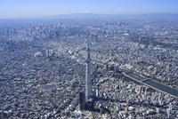 スカイツリー空撮 北東より都心・新宿・富士山を望む