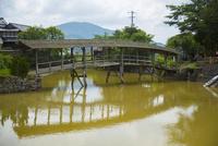 弓削神社の屋根付き太鼓橋