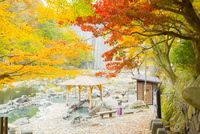 秋の湯原温泉