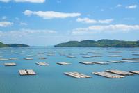 邑久町カキイカダのある風景 10685001073| 写真素材・ストックフォト・画像・イラスト素材|アマナイメージズ