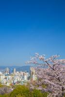 比治山公園より広島市 10685002547| 写真素材・ストックフォト・画像・イラスト素材|アマナイメージズ