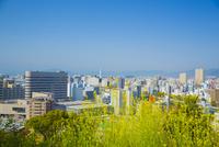 比治山公園より広島市 10685002548| 写真素材・ストックフォト・画像・イラスト素材|アマナイメージズ