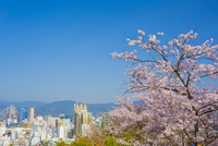 比治山公園より広島市 10685002556| 写真素材・ストックフォト・画像・イラスト素材|アマナイメージズ