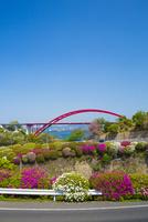 ツツジと第二音戸大橋 10685002600| 写真素材・ストックフォト・画像・イラスト素材|アマナイメージズ