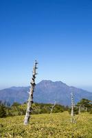 瓶ヶ森と石鎚山