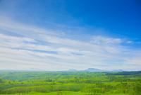 押戸石の丘 10685002764| 写真素材・ストックフォト・画像・イラスト素材|アマナイメージズ