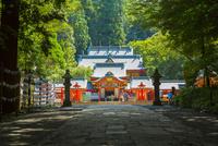霧島神宮 10685003064| 写真素材・ストックフォト・画像・イラスト素材|アマナイメージズ