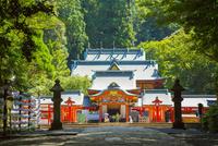 霧島神宮 10685003065| 写真素材・ストックフォト・画像・イラスト素材|アマナイメージズ