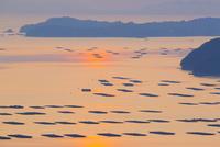 虫明湾の夜明け