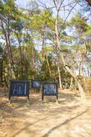 国の史跡備中国分尼寺跡