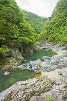新緑の長門峡