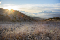 高ボッチ高原の夜明け