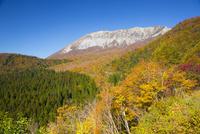 鍵掛峠より紅葉と大山