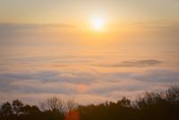 高谷山より朝日と霧の海
