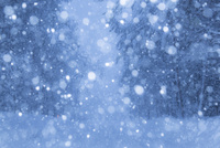 雪降る山道