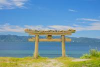 直島の埋もれた鳥居と瀬戸内海