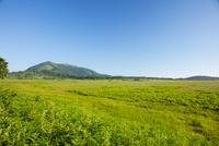 八島ヶ原湿原の遊歩道より鷲ヶ峰
