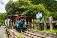 魚梁瀬森林鉄道跡の馬路森林鉄道