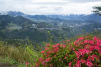 ツツジ咲く国見ヶ丘より高千穂盆地を望む 10685004699| 写真素材・ストックフォト・画像・イラスト素材|アマナイメージズ