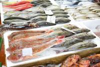 瀬戸の魚介類