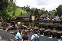 バリ島ティルタウンプル寺院の沐浴場 10685004847| 写真素材・ストックフォト・画像・イラスト素材|アマナイメージズ
