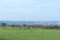 草原と遠くに浮かぶバルーン