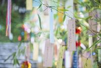 七夕飾り 10686000468| 写真素材・ストックフォト・画像・イラスト素材|アマナイメージズ