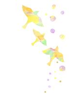 花と鳥 10690000006  写真素材・ストックフォト・画像・イラスト素材 アマナイメージズ