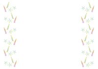 夏パターン・貝殻とヒトデ 10690000017| 写真素材・ストックフォト・画像・イラスト素材|アマナイメージズ