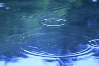 水面に落ちる雨