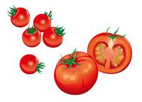 野菜 トマト プチトマト