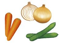 野菜 玉葱 人参 きゅうり