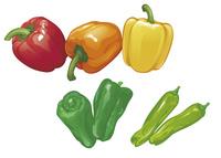 野菜 パプリカ ピーマン ししとう