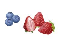果物 イチゴ ブルーベリー