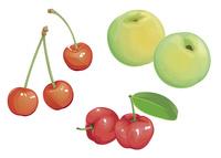果物 チェリー 青梅 アセロラ
