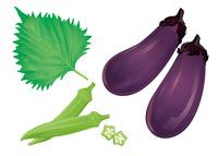 野菜 茄子 オクラ 大葉