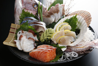 鯛,サーモン,ホタテ,タコ.しめ鯖の刺身 10724006987| 写真素材・ストックフォト・画像・イラスト素材|アマナイメージズ