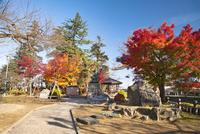 秋の上杉謙信象