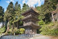 慈恩寺三重の塔の秋