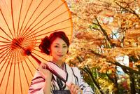 紅葉の中和傘をさす着物の女性